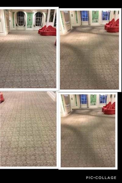 Before & After Carpet Cleaning in Centennial, CO (1)