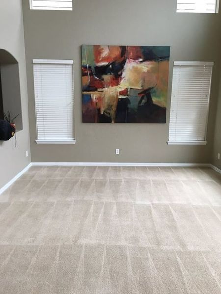 Carpet Cleaning in Denver, CO (1)